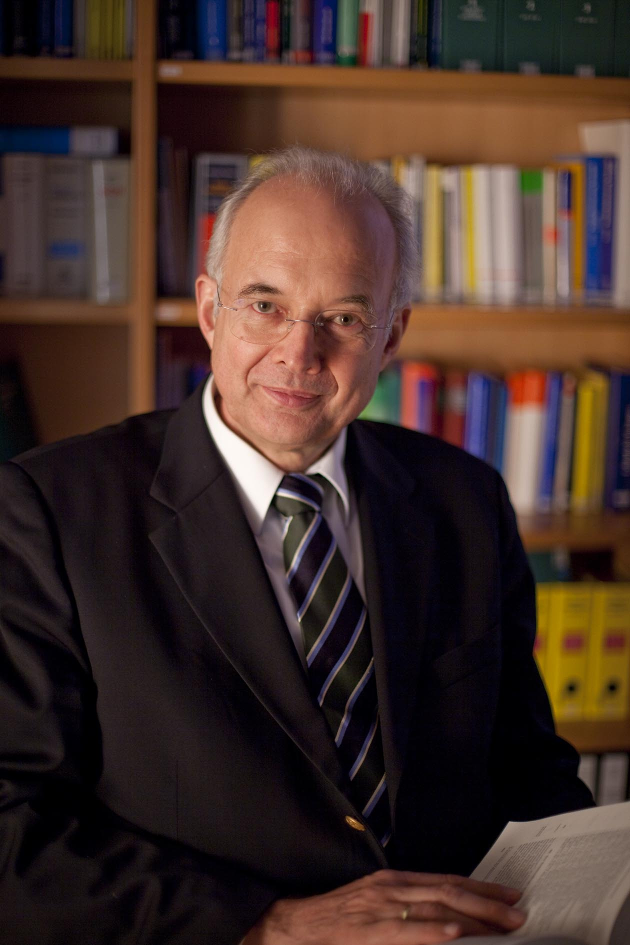 Prof. Dr. Dr. hc. Paul Kirchhof